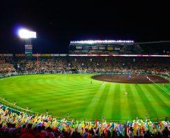 日本のプロ野球選手の平均年俸は?プロ野球選手はいくらもらえる?